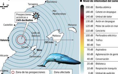 NO a la la búsqueda de petróleo en el Golfo de Valencia