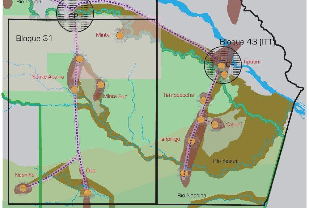 Ecuador: Estudio concluye que área afectada en el Yasuní será mayor a lo señalado por Correa